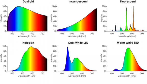 Color Temperature of Different Bulbs