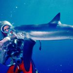 Hundreds of Hours of Underwater Footage Digitized With Cintel Scanner for Playing With Sharks